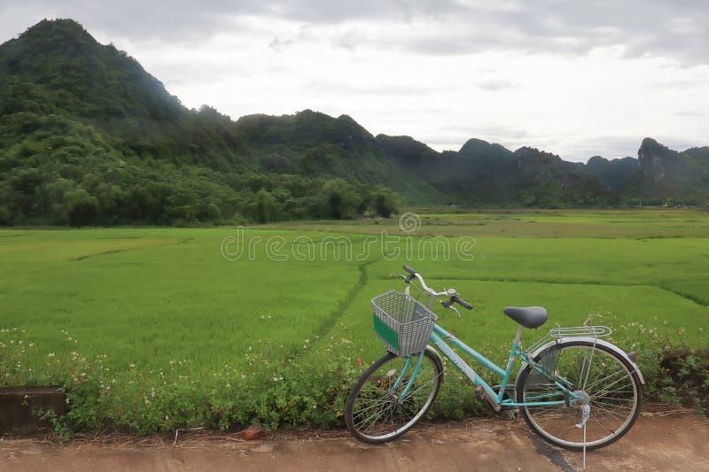 Cycling through Phong Nha Ke Bang National Park Vietnam stock images