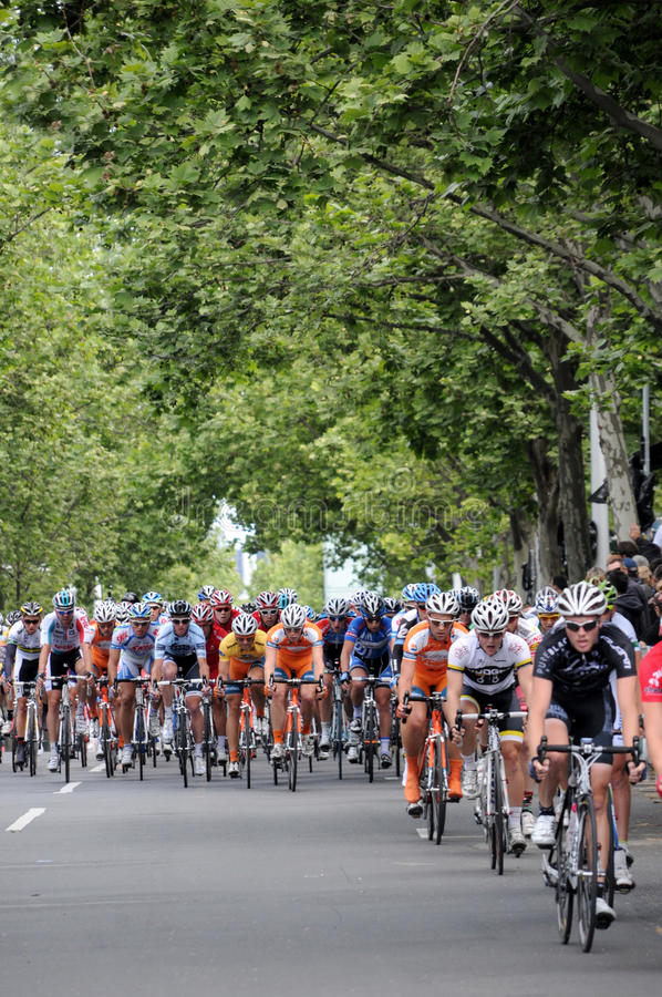 Download Cycling Race - Herald Sun Tour Editorial Stock Photo - Image: 22229123