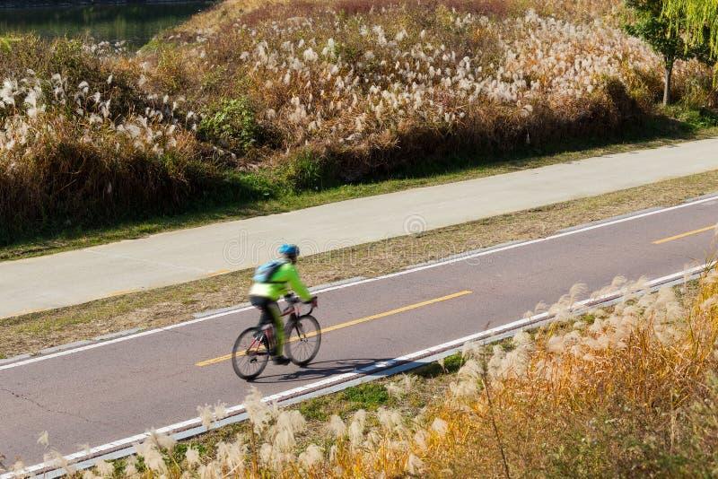 Cycling road stock image