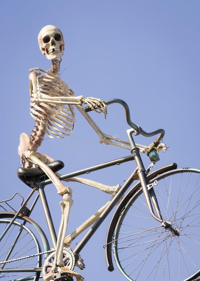 Cycling skeleton stock image