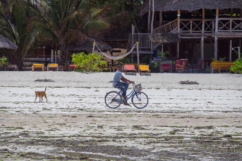 Cyclist on the beach with his dog. Travel around Zanzibar. 2018.02.21, Kiwengwa, Tanzania. Cyclist on the beach with his dog. Travel around Zanzibar.People on stock photo