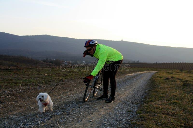Cyclist chiama il suo cagnolino per avvicinarsi fotografie stock libere da diritti