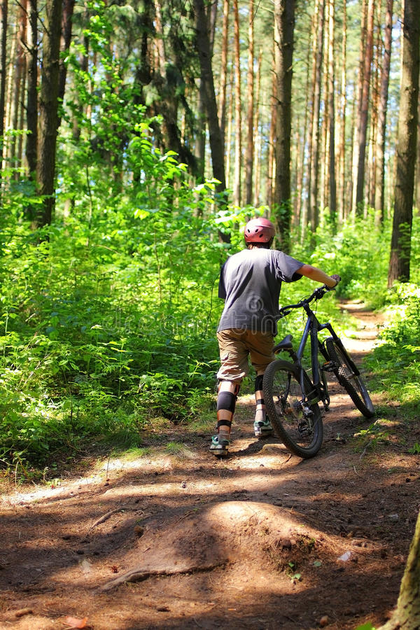 Free Cyclist In Forest Stock Images - 14763384