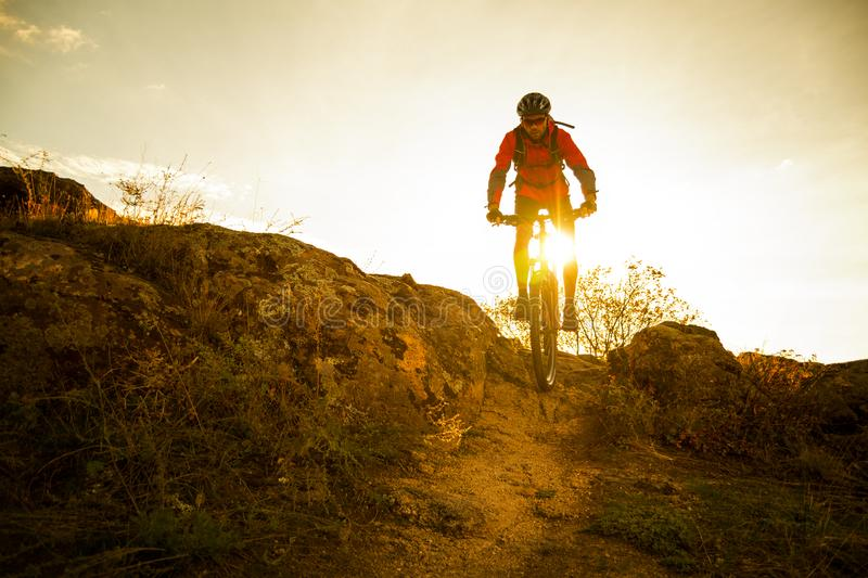 Cyclist in Red Riding the Bike on Autumn Rocky Trail at Sunset. Extreme Sport and Enduro Biking Concept. Cyclist in Red Riding the Bike on the Autumn Rocky royalty free stock image