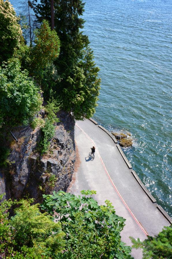 Cyclist rides on Stanley Park`s famous Seawall on a sunny summer day. scenic view from the rock of water and majestic trees. Vancouver Canada royalty free stock photography