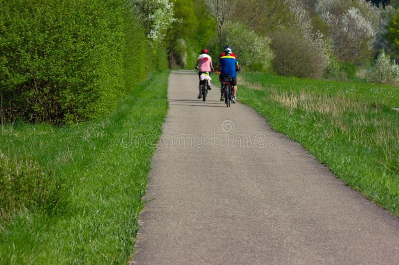 cyclist in springtime royalty free stock photos