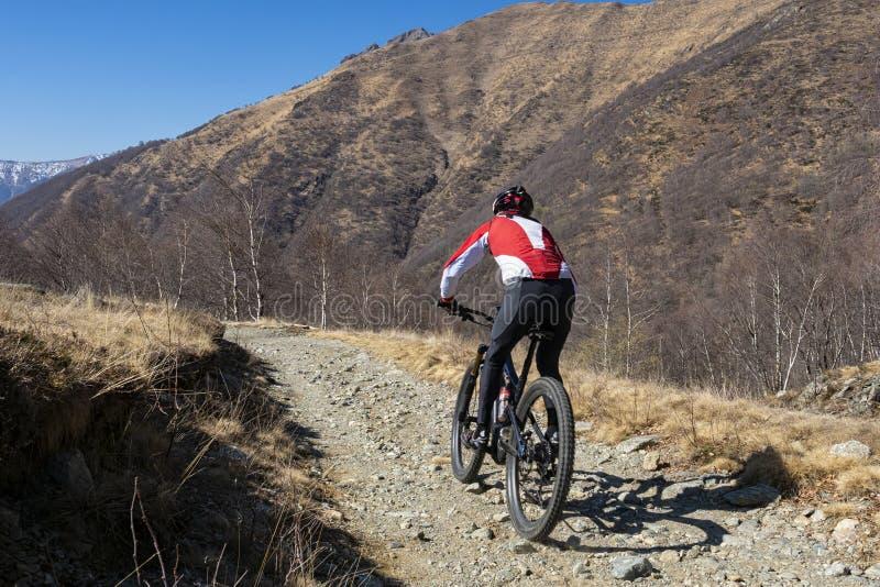 Cycliste dans les Alpes photographie stock libre de droits