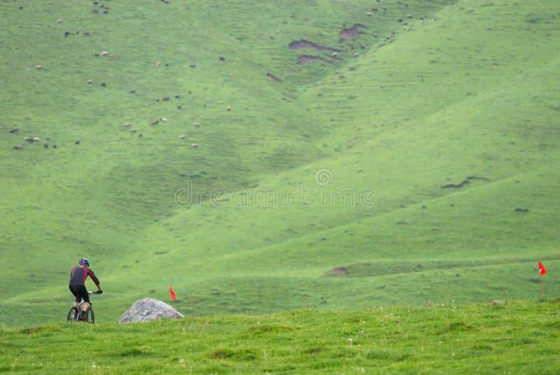Cycliste de montagne sur le chemin photographie stock libre de droits