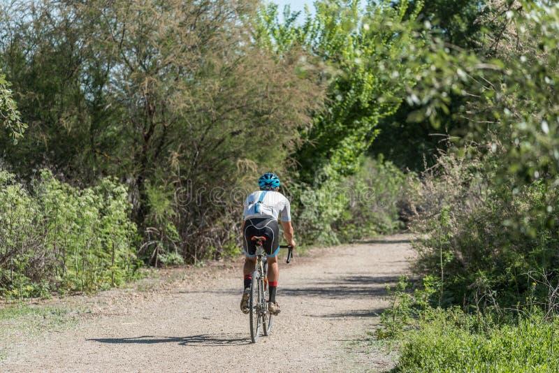 Cycliste sur un chemin de terre dans une forêt photographie stock libre de droits