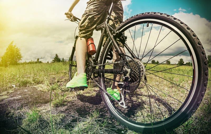 Cycliste sur un vélo de montagne sur une voie de forêt images stock