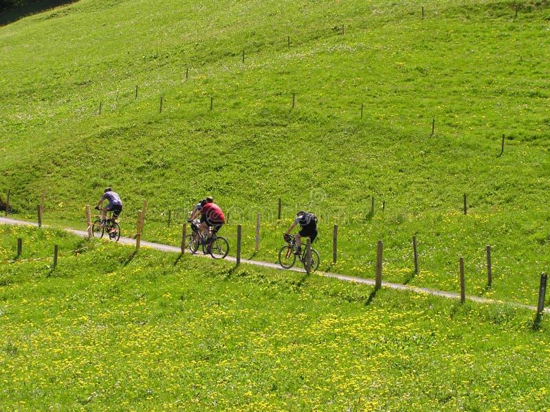 Cyclistes photos libres de droits