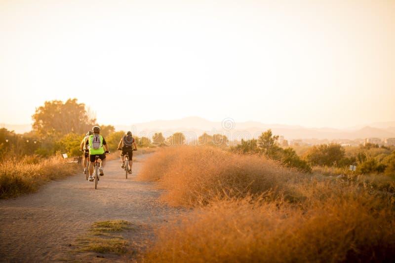 Cyclistes sur la route de campagne photographie stock libre de droits