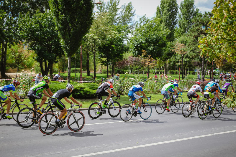 Cyclists competing, view from behind. Happy cyclists competing in RGT Road Grand Tour Champions Race, Bucharest, Romania stock image