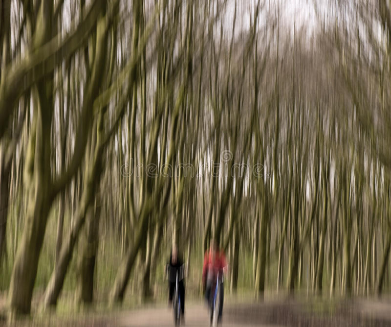 Cyclists in the forest royalty free stock photography