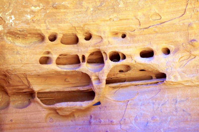 Cycowi zbiorniki, rewolucjonistki konserwacji Rockowy teren, Południowy Nevada, usa obraz stock
