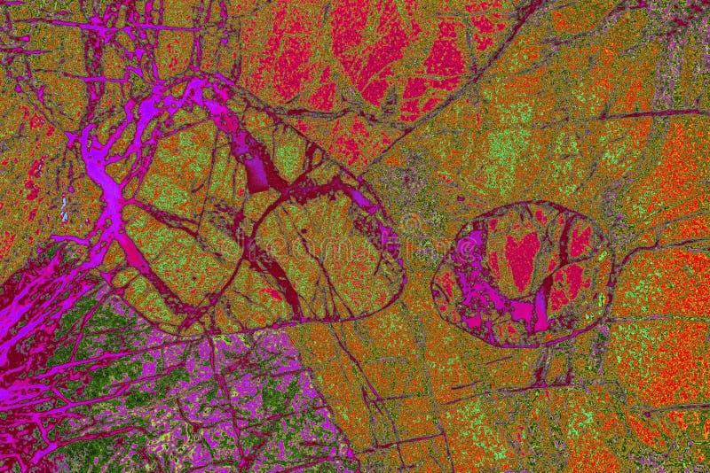 Cyfrowo manipulujący, abstrakcjonistyczny micrograph olivine pyroxenite z polariztion obraz stock