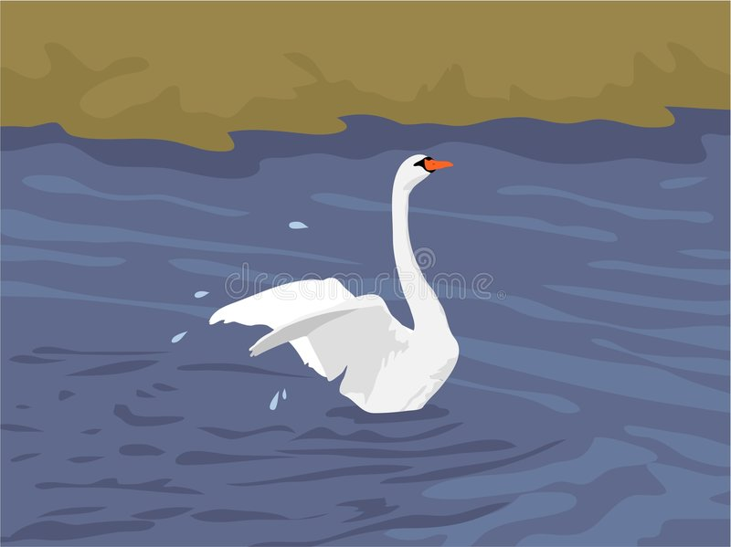 Download Cygne illustration de vecteur. Illustration du horizontal - 78954
