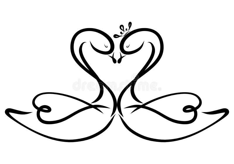Cygnes élégants, baiser tendre des amants, modèle et coeur illustration libre de droits
