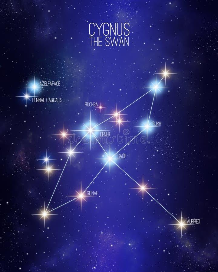 Cygnus a constelação da cisne em um fundo estrelado do espaço ilustração stock