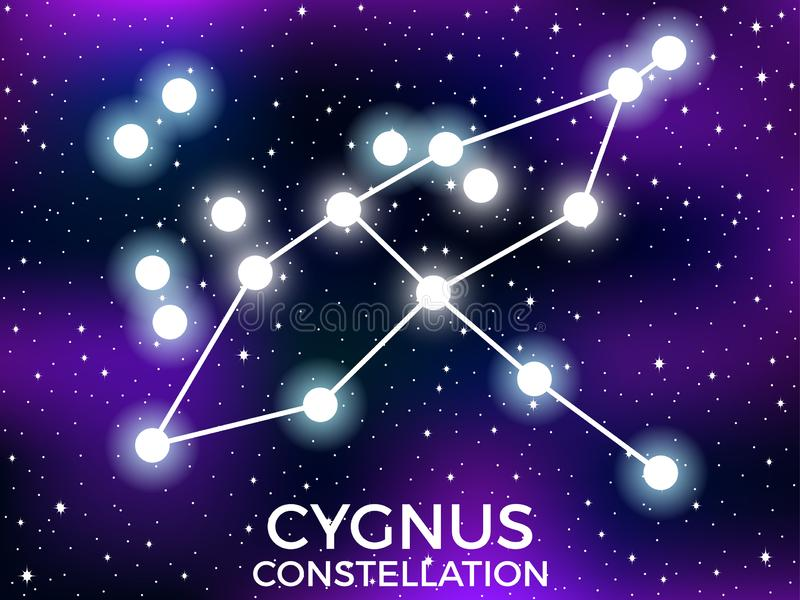 Cygnus constellation. Starry night sky. Cluster of stars and galaxies. Deep space. Vector. Illustration royalty free illustration