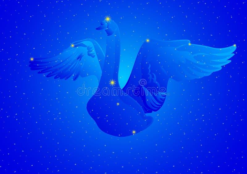 Cygnus de la constelación stock de ilustración
