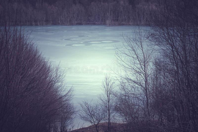 Cyjanku zanieczyszczenie przy Geamana jeziorem obraz royalty free