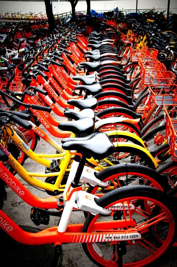 cykel-dela systemet, offentligt delad cykel Shenzhen, Kina för cykel system royaltyfria foton