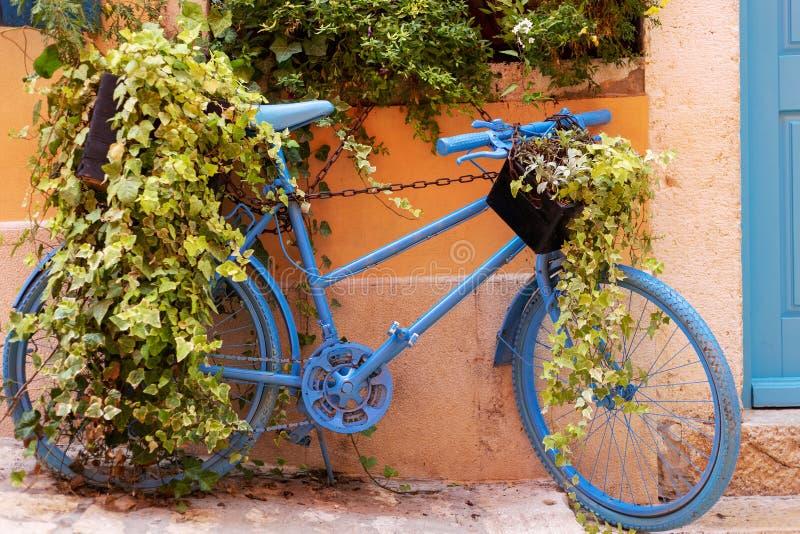 cykel garnering Rovinj gammalt town arkivbild