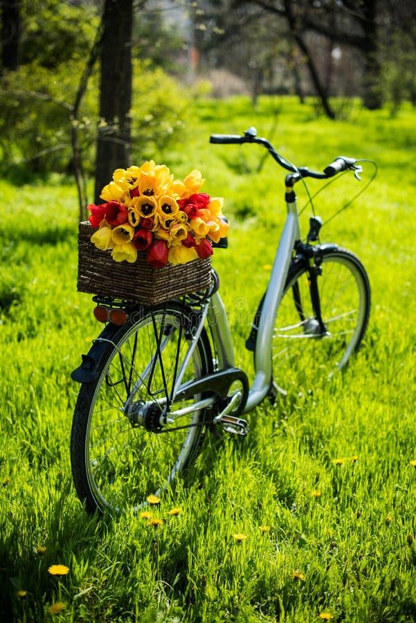 Cykel med blommor royaltyfria bilder