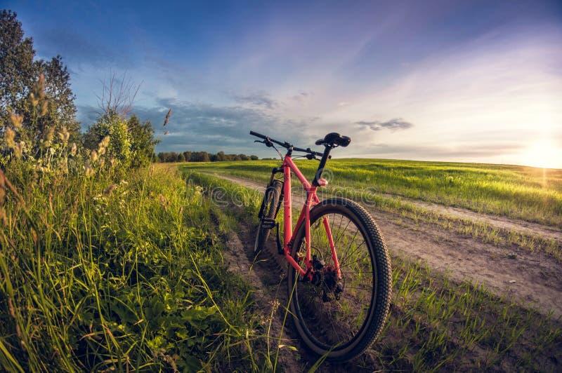 Cykel nära vägen i fältet på solnedgången royaltyfri bild