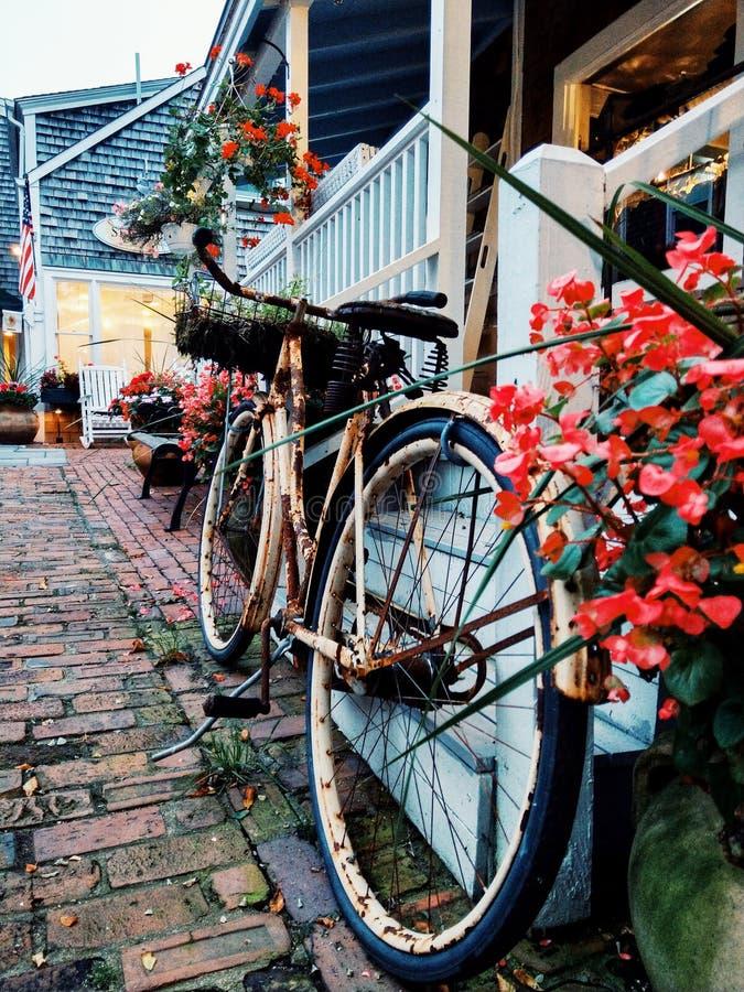Cykel på en gränd arkivbilder
