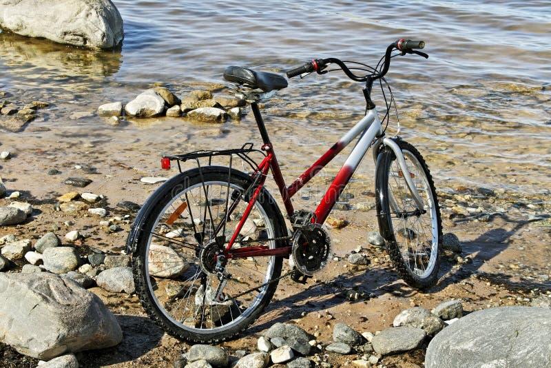 Cykel på havet royaltyfri fotografi