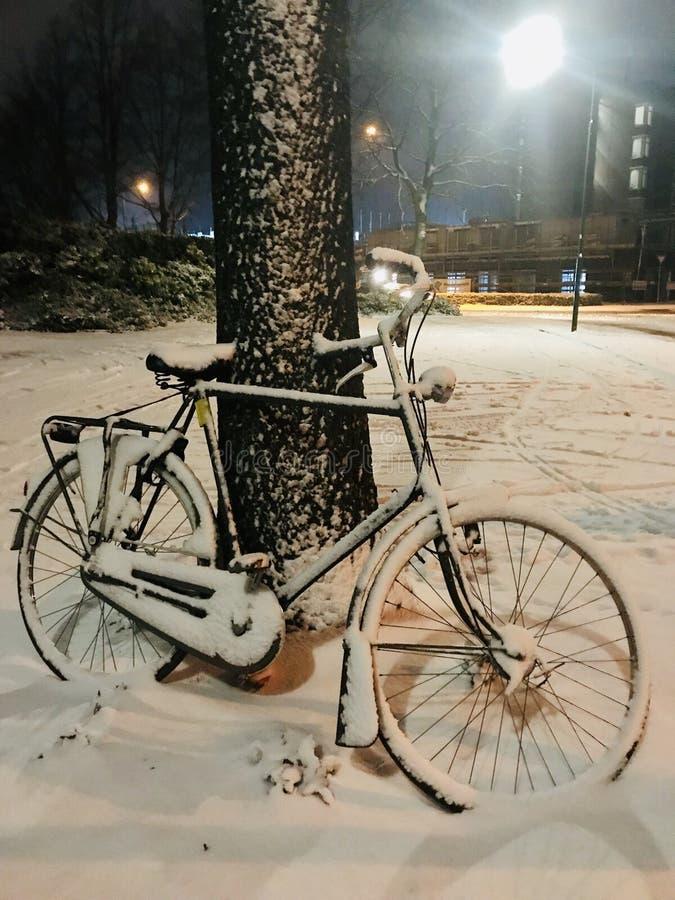 Cykel som täckas av snö royaltyfri bild