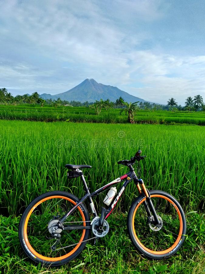 Cykel till naturen royaltyfria bilder