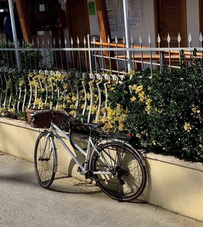 Cykel tuscany arkivbild