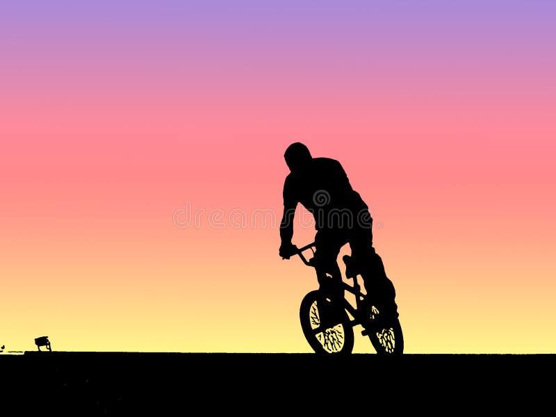 cykelbmxcyklist royaltyfri illustrationer