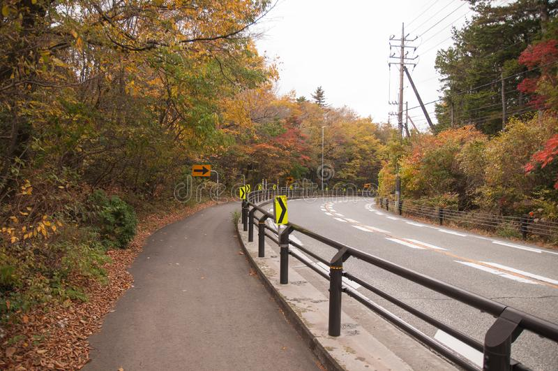Cykelgränd förutom huvudvägen arkivbild