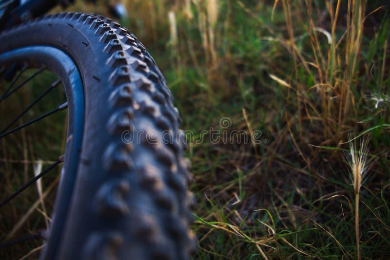 Cykelhjul och gummihjulcloseup arkivbild