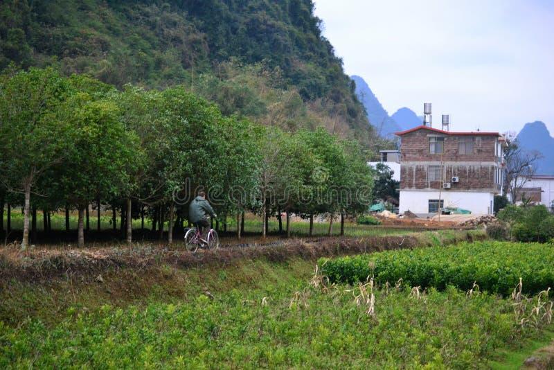 Cykeln turnerar och cykla till byar runt om Yangshuo, Guilin, Guangxi med härligt karstlandskap i Kina royaltyfria foton