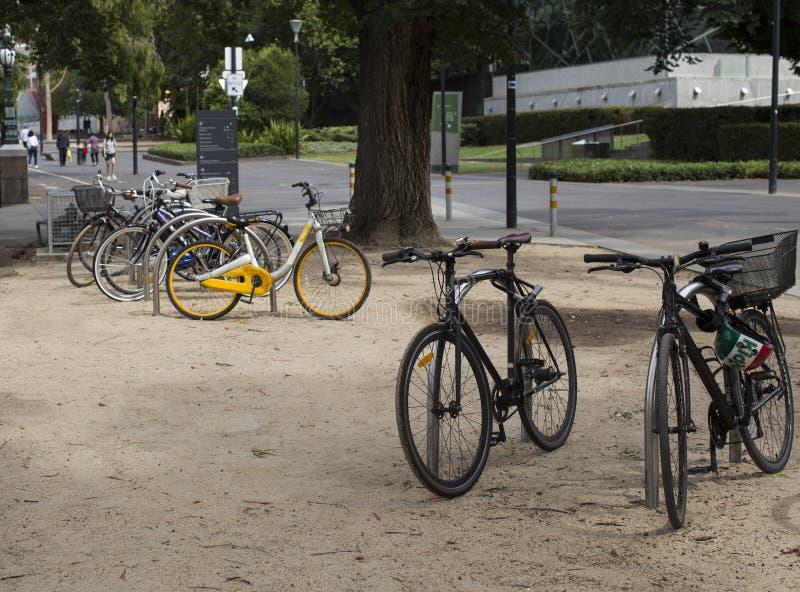 Cykelparkering i mitt av en parkera royaltyfria foton