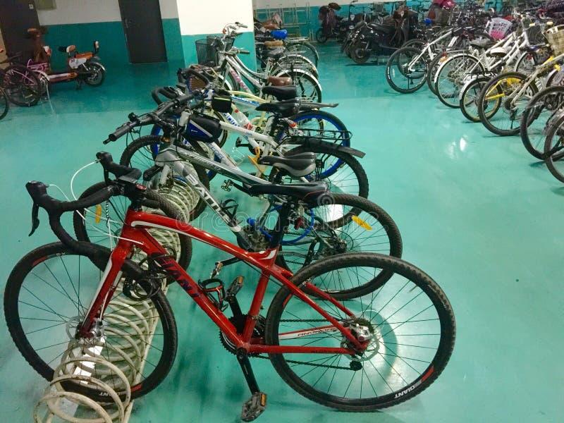 Cykelparkeringskugge royaltyfri fotografi