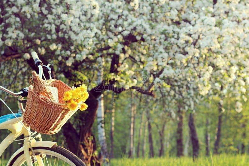 Cykelpicknick utomhus arkivbilder