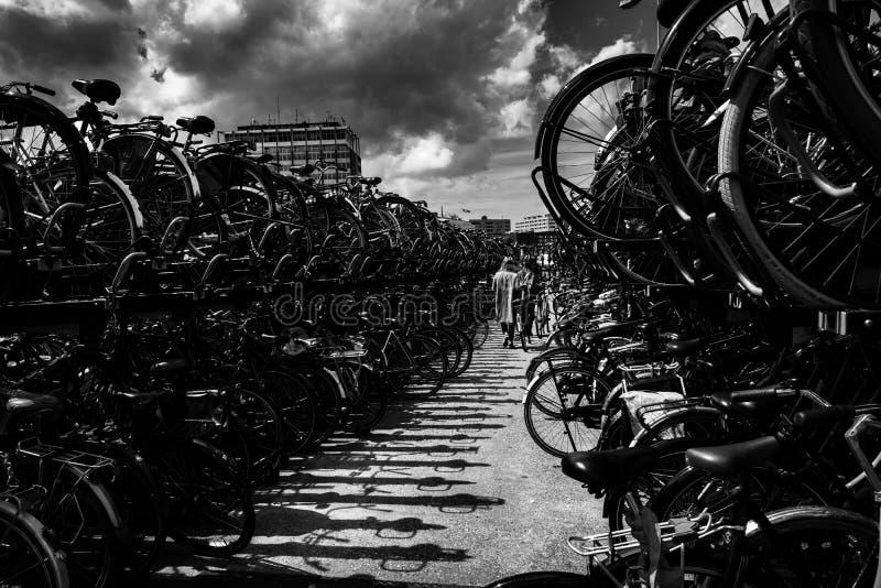 Cykla att parkera arkivbild