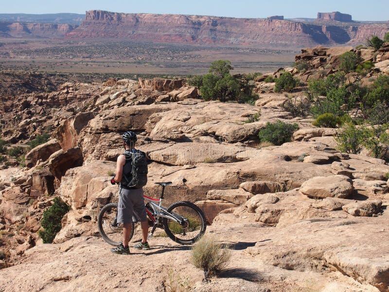 cykla den suveräna trailen för berg arkivfoton