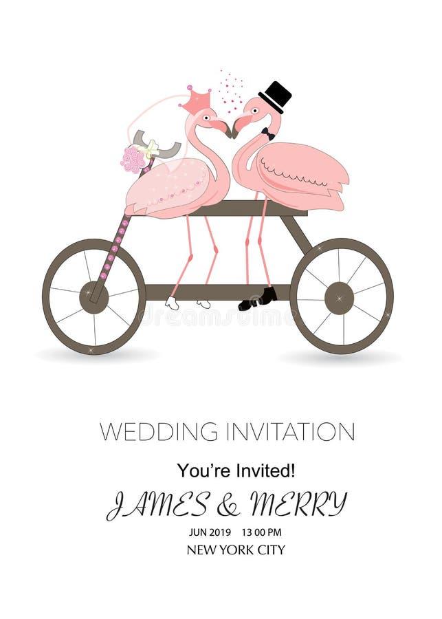Cykla ett älska par av roliga flamingo är kyssande i gunga Begreppet av förälskelse bröllop för romantiskt symbol för inbjudan fö vektor illustrationer