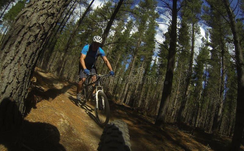 Cykla för berg arkivfoto