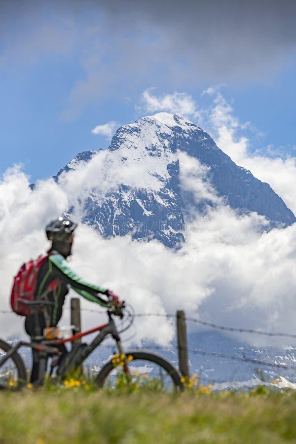 Cykla för berg i Grindelwald, Schweiz royaltyfri bild