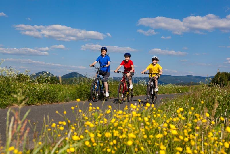 Cykla för familj royaltyfri bild