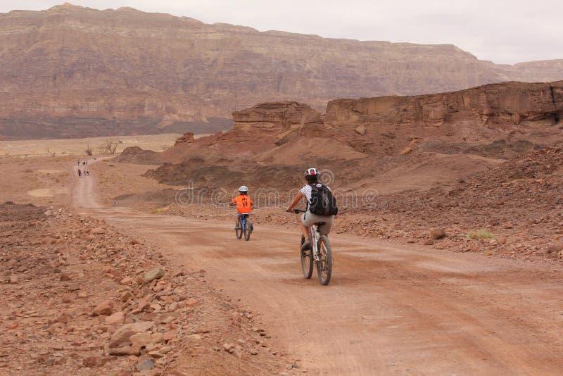 Cykla på öknen arkivfoto