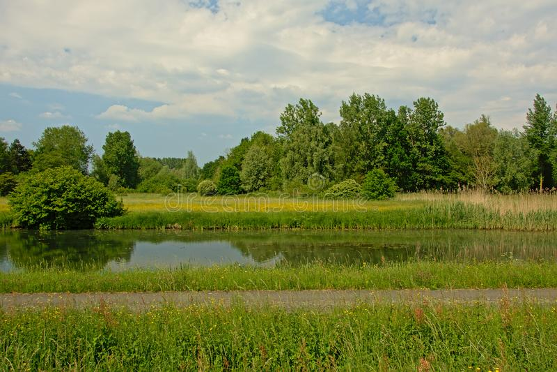 Cykla slingaalon en kanal med ängen med vildblommor och gräsplanträd royaltyfri fotografi